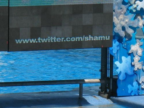Shamutwitter