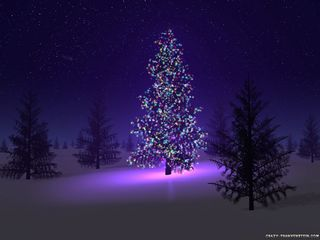 Beautiful-christmas-tree